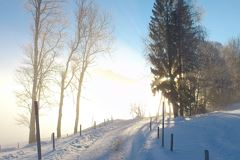 Winter Sonne im Nebel
